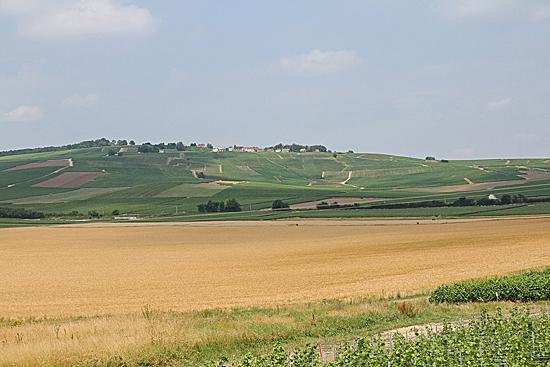 Chanpagne-landskap-1