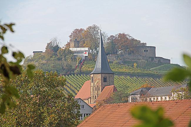 Burgberg med slottsruin och Johanneskyrkan i förgrunden.