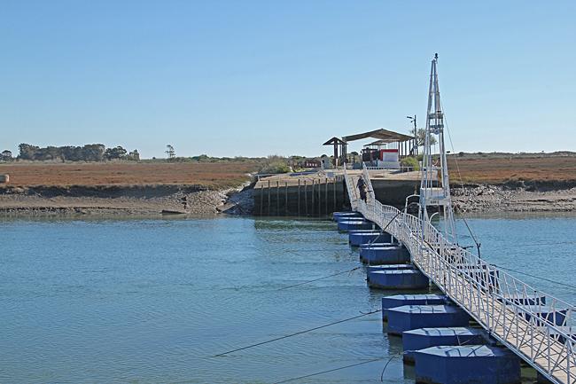 Den smala pontonbron ut till ön.