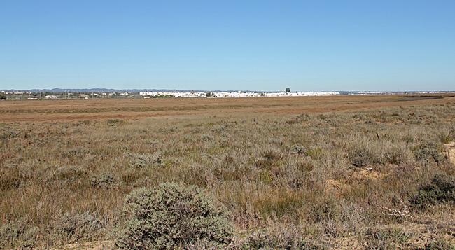 Det karga landskapet med Santa Luzia i bakgrunden.