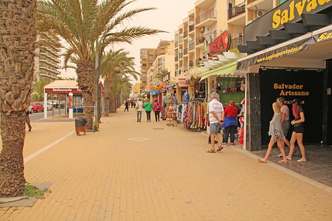 En gata i Roquetas de Mar