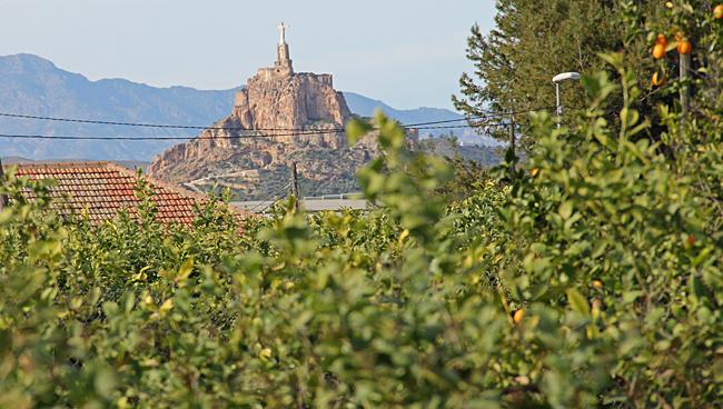 Efter cykelvägen in mot centrum finns en del citronodlingar. Här syns en hög kristusstaty på ett berg i bakgrunden.