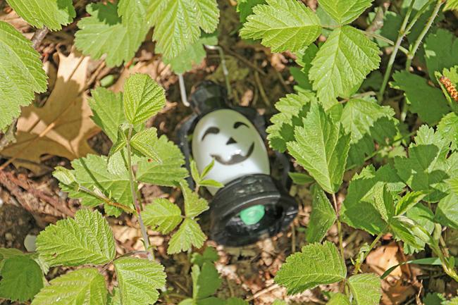 Så här såg en gömma ut i Bergisch Gladbach.