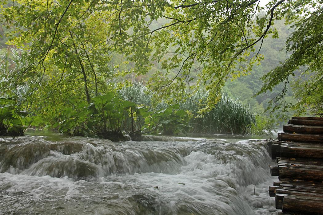Stämningsfulla platser bildas av vattenfall och lövverket samt vassruggar.