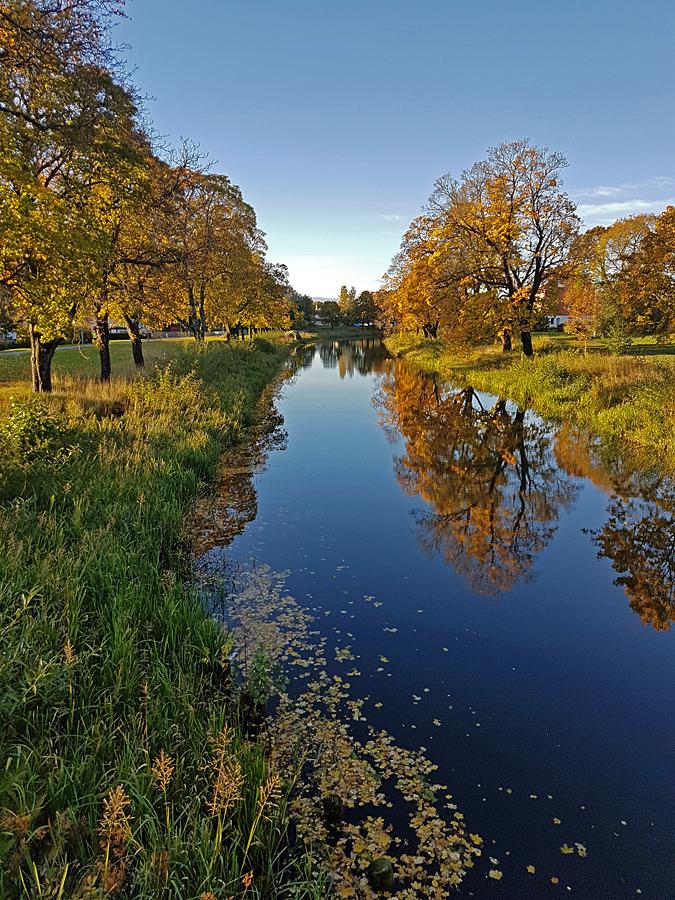 På första morgonpromenaden efter hemkomst upplever vi våt vackra Torshälla i höstskrud.