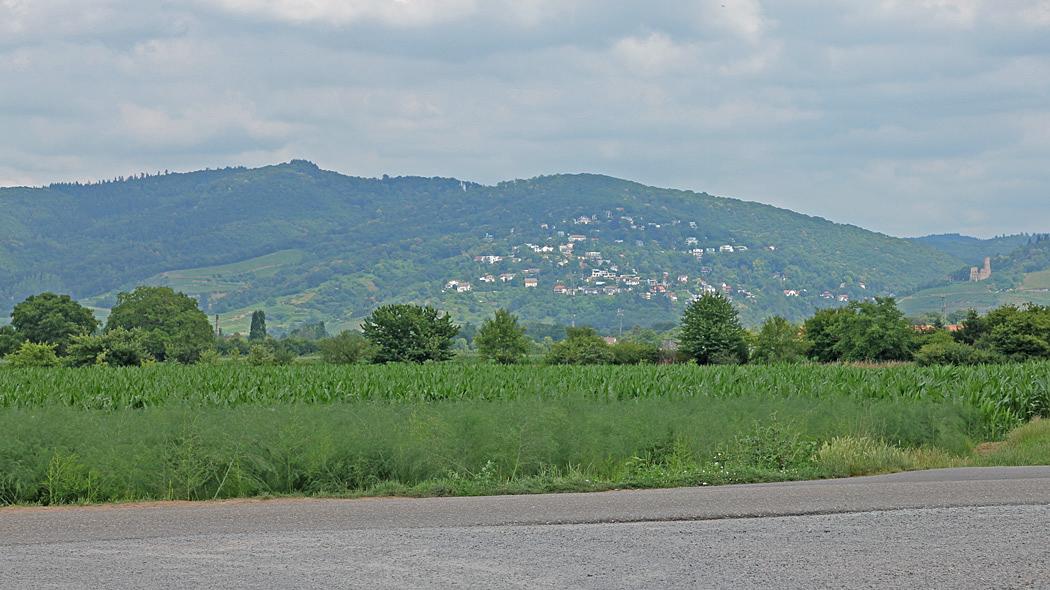 Utsikt från ställplatsen i Ladenburg.