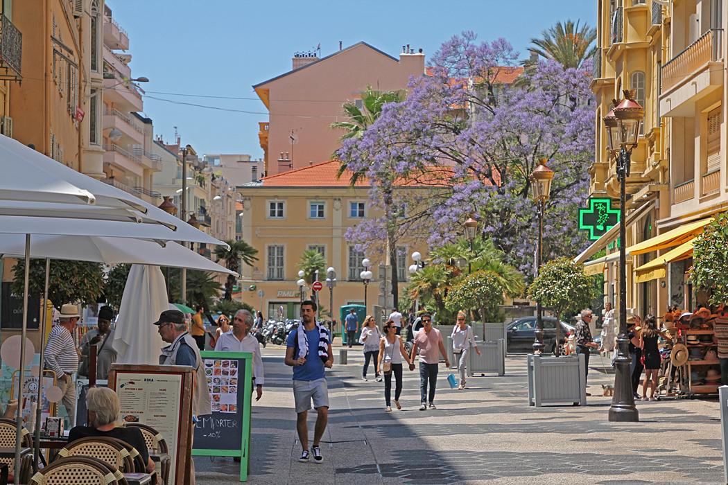 Blommande träd förskönar stadsbilden.