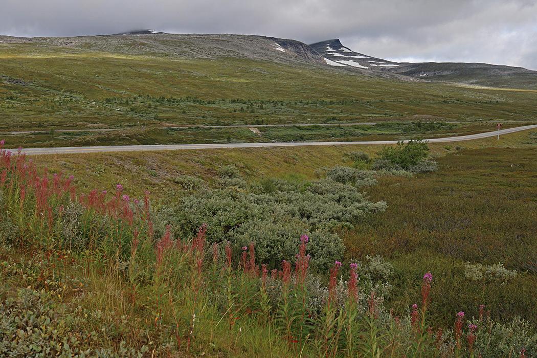 Europaväg 6 går över Saltfjellet i Norge.