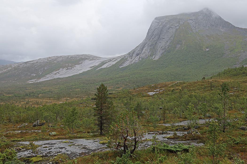 Ytterligare ett fjäll innan vi når Narvik.