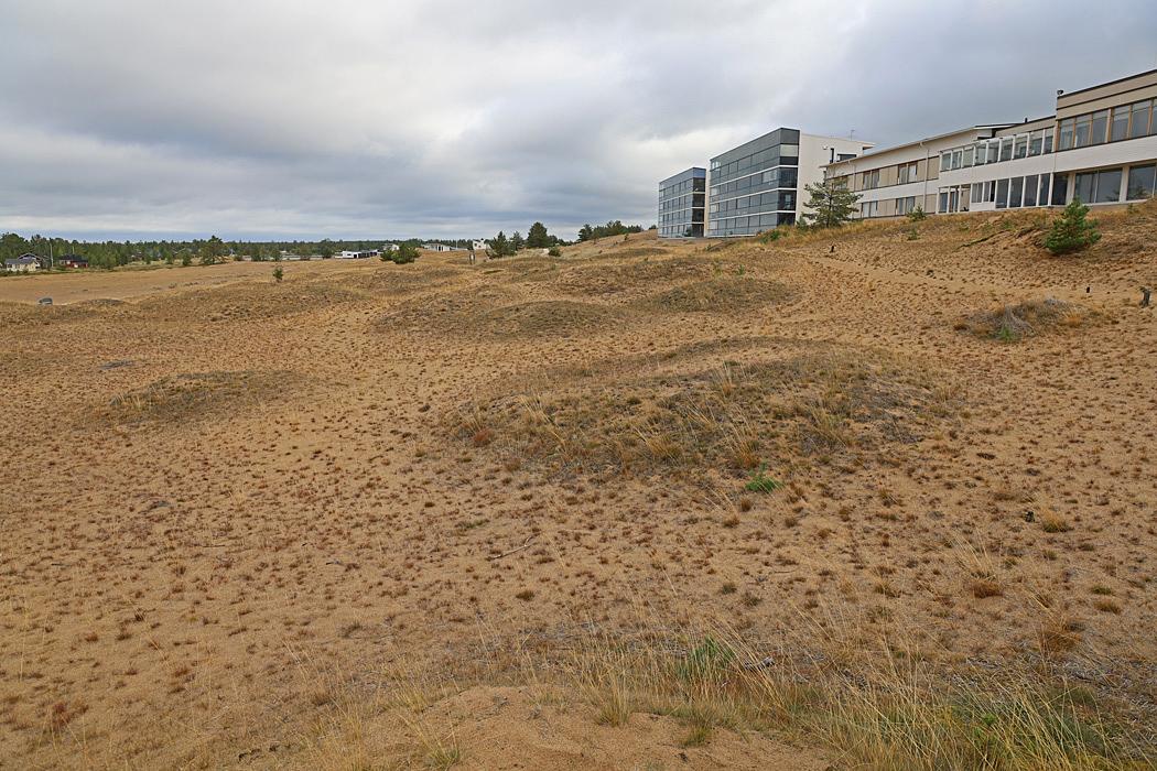 Förutom den oändliga sandstranden finns här dessutom många strandrestauranger och nattklubbar.