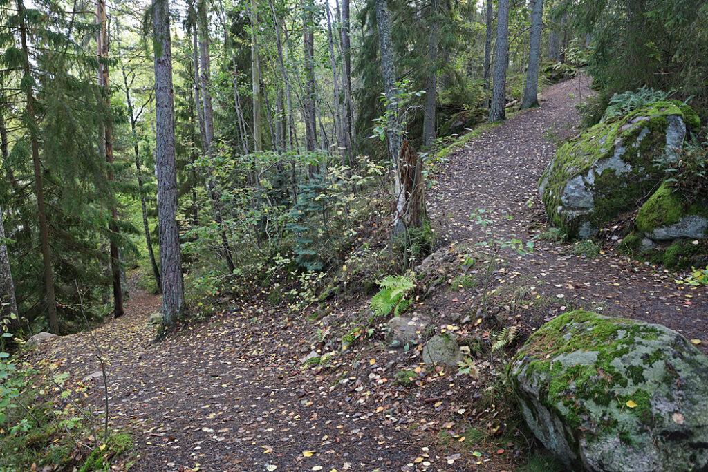 Visar stigen uppför begssluttningen. till trollskogen